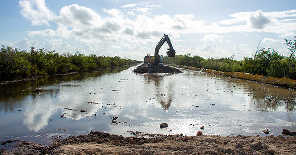 Five miles of the old Tamiami Trail is being removed to allow water to flow under the new bridges.