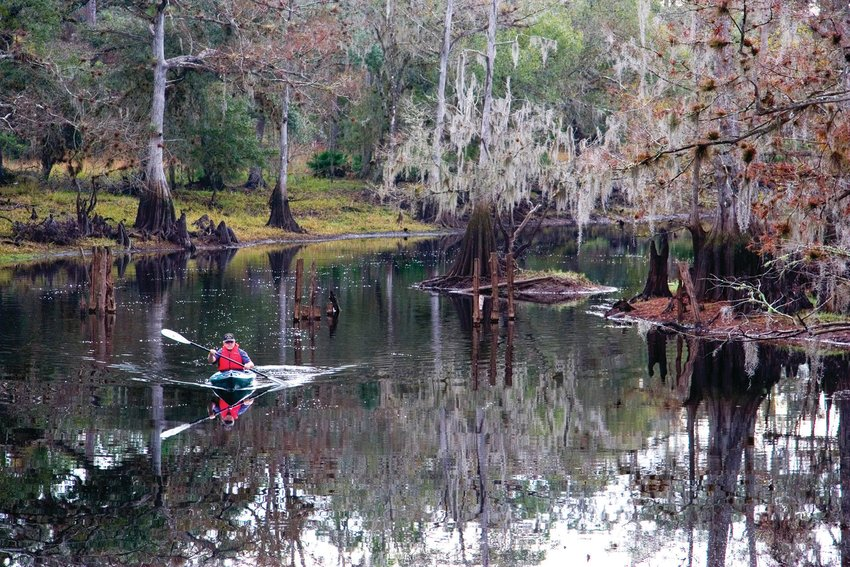 Paddlers will find miles of undeveloped landscapes that remain the domain of alligators, ibis, herons, egrets, wood storks, roseate spoonbills, hawks, ospreys and owls.