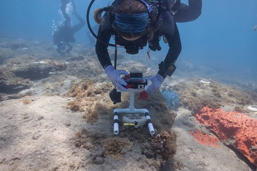 Monitoring has occurred so far at one week, two weeks and four weeks after outplanting and will continue monthly for two years. The photographs and observations are now being entered into a database. Information on the fate of these corals during this critical time will be available in early July.
