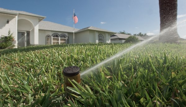 Most Floridians use double the amount of water the lawn actually needs to stay healthy.
