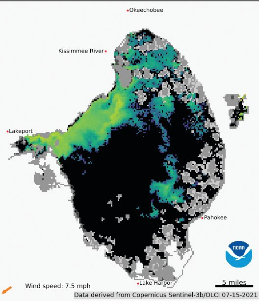 """This satellite image of Lake Okeechobee shows moderate algal bloom potential in the areas in green and blue. Areas in orange or red are most likely to have surface scum. The image shows bloom """"potential."""" It cannot determine how much algae is actually in the lake."""