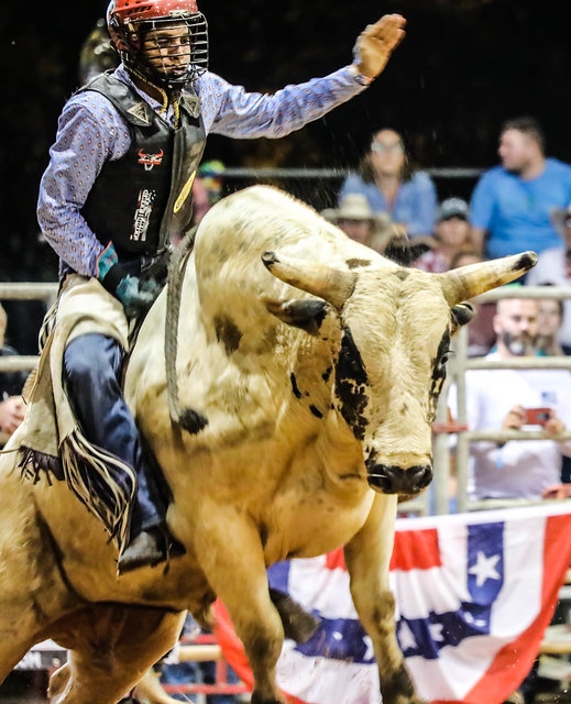 Riding a bull is not for the faint of heart as Dyami Nelson demonstrated at the 2019 Indiantown Rodeo.