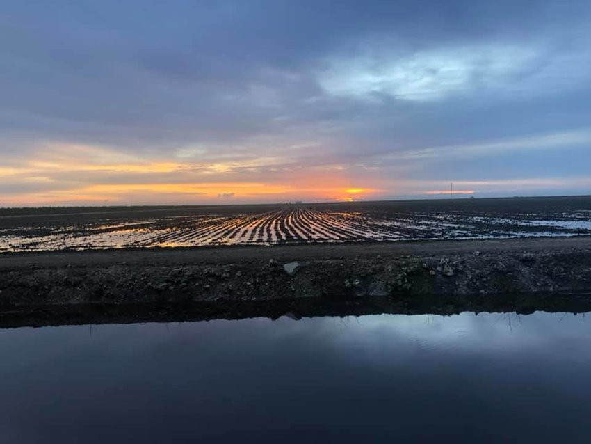 """""""It seems like it never fails. We are supposed to start planting our sugar crop on Monday, but Mother Nature has other plans for us. We received nearly 4 inches of rain last night. We are at the mercy of the good Lord,"""" Keith Wedgeworth posted on Facebook Oct. 9, 2021 along with a photo of a flooded field."""