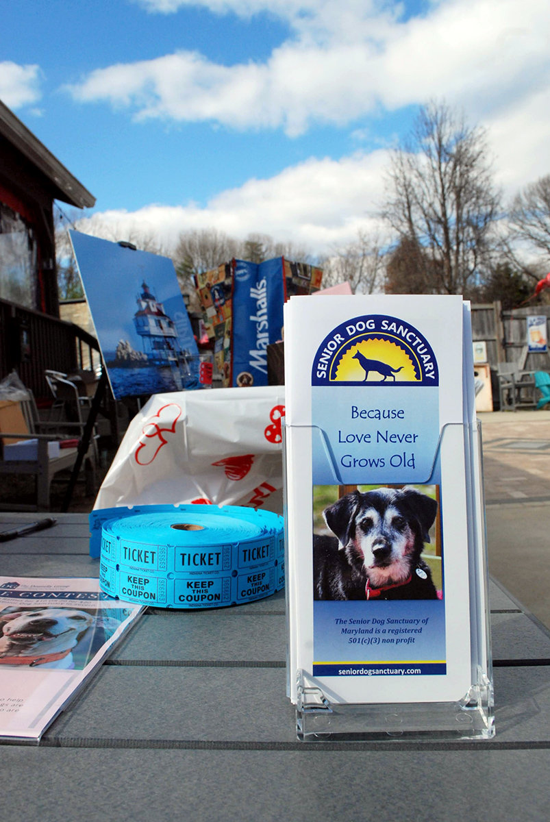 Senior Dog Sanctuary was the beneficiary of the Valentine's Pictures with the Pooches fundraiser.
