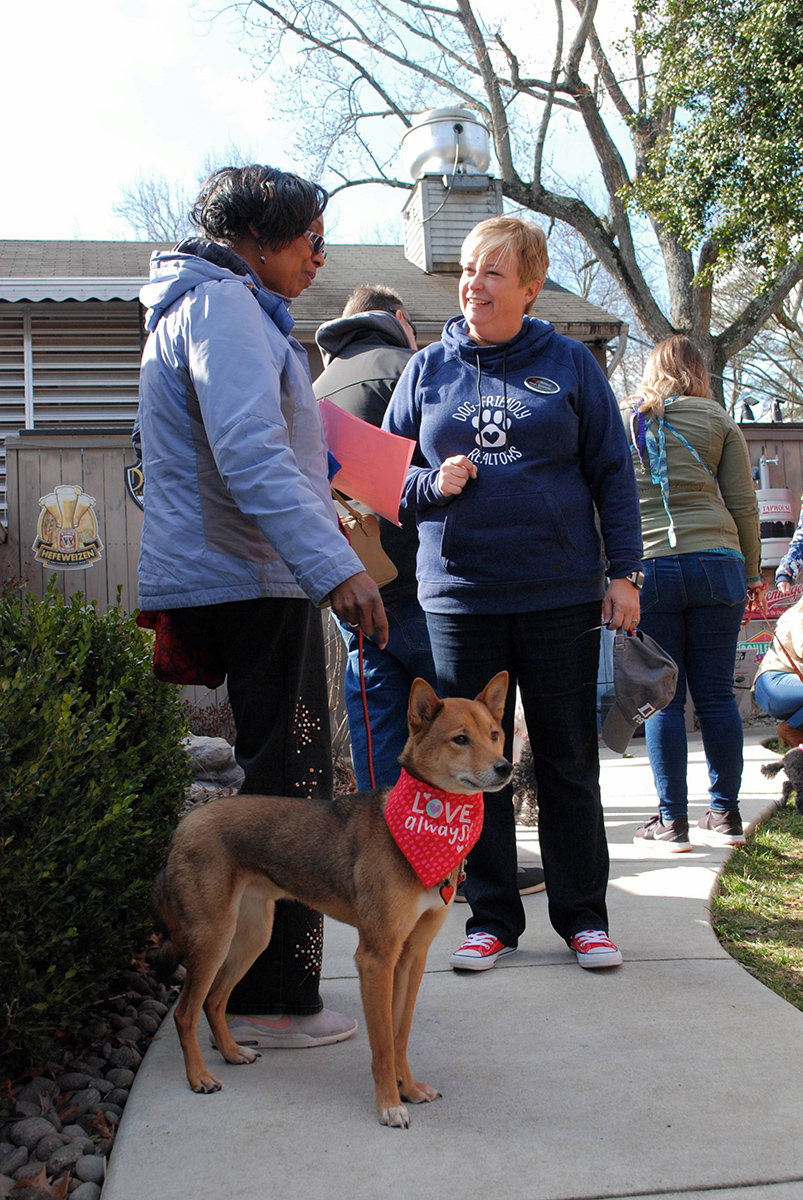 Angie Hicks, alongside her sheba inu, Nikko, spoke with Diane Donnelly, president of the Seller's Division of The Donnelly Group.