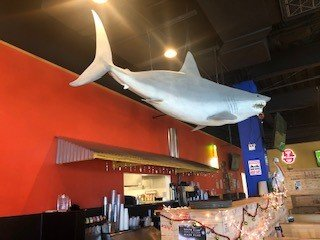 Bruce, the shark, is a favorite among patrons at Angry Crab Shack.