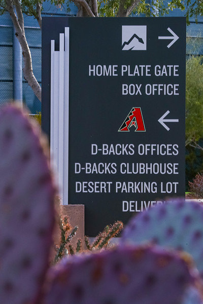 Ticket sales at Salt River Fields will be announced at a later date for the Arizona Diamondbacks 2021 spring training information at dbacks.com/spring.