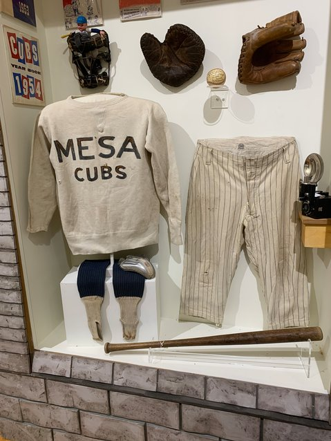 "A Mesa Cubs case at the ""Play Ball: The Arizona Spring Training Experience"" exhibit opening March 6 at Mesa Historical Museum, 2345 N. Horne."