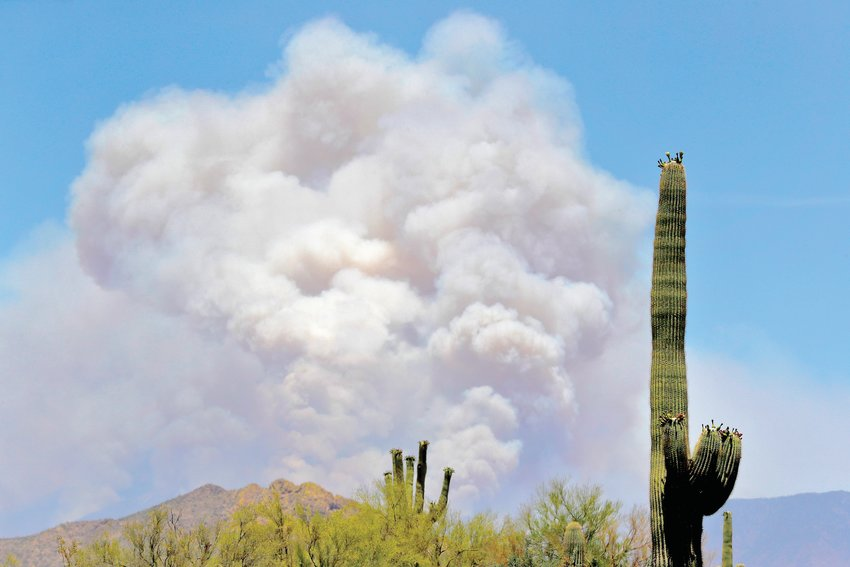 A portion of the Bush fire burns through the Tonto National Forest on Tuesday, June 16, 2020, as seen from Apache Junction. [The Associated Press]