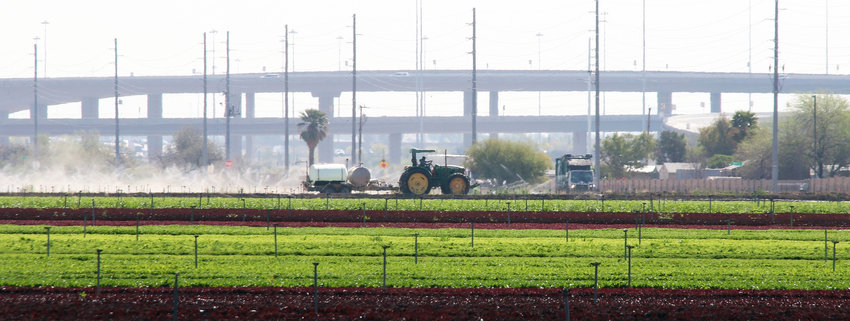 A Duncan Family Farms crew member works a field at Perryville and McDowell roads April 3. The land is part of 1,099 acres in Goodyear to be auctioned off by the Arizona  State Land Department.