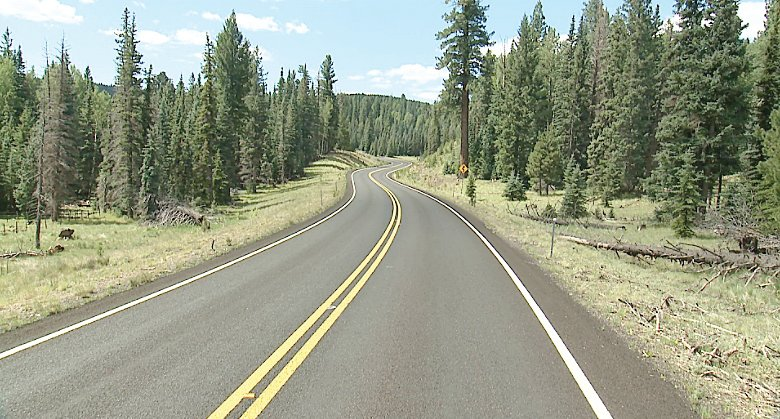 Officials announced the reopening of State Route 273 between Sunrise Park and Big Lake in the White Mountains, pictured, along with other routes in the area. [Courtesy of ADOT]