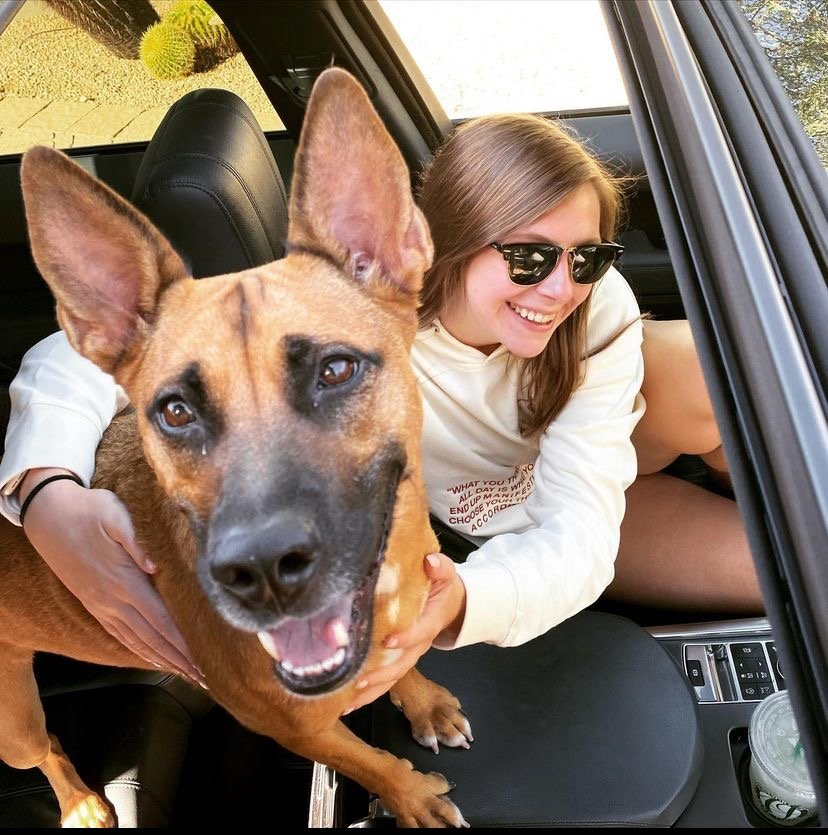 The Local Dog Owner Morgan Harris and her 5-year-old German Shepherd mix named Molly.