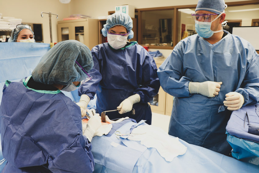 Students learn techniques for assisting with surgical procedures in the adult surgical technology program.