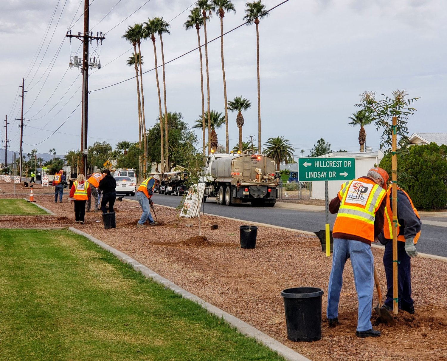 Sun City PRIDES volunteers and Maricopa County Department of Transportation crews did some planting the day before Thanksgiving in the medians along Alabama Avenue.