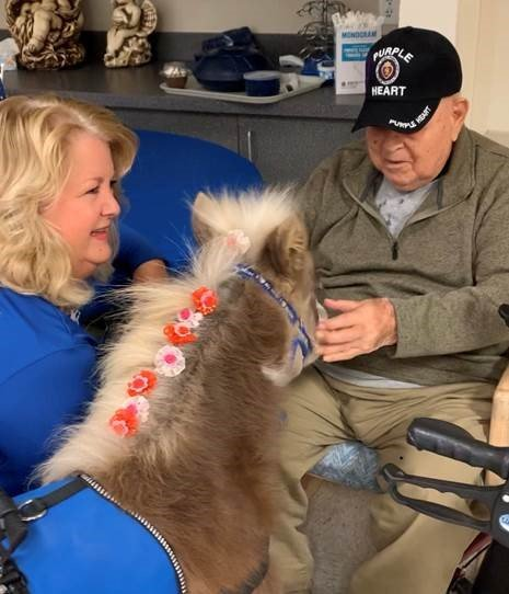 Members of the Piestewa Peak Chapter of the National Society Daughters of the American Revolution visited veterans with therapy mini-horses.