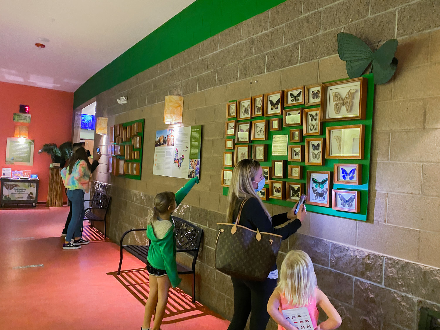 The Della and Gary Nature Collection is now on display at Butterfly Wonderland.
